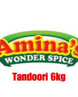Aminas Wonder Spice Tandoori Marinade 6kg